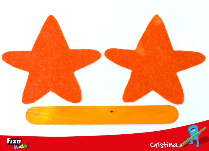 partes de una estrella de mar