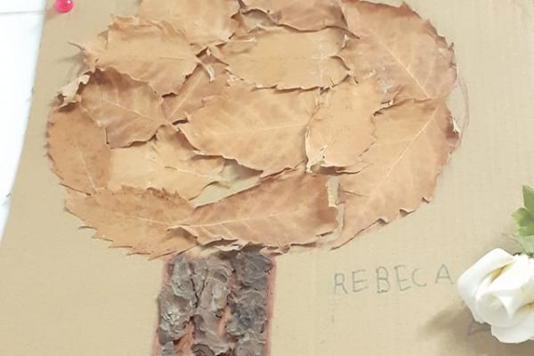 11-vlad-mihaela-ramona-rebeca-9-anos